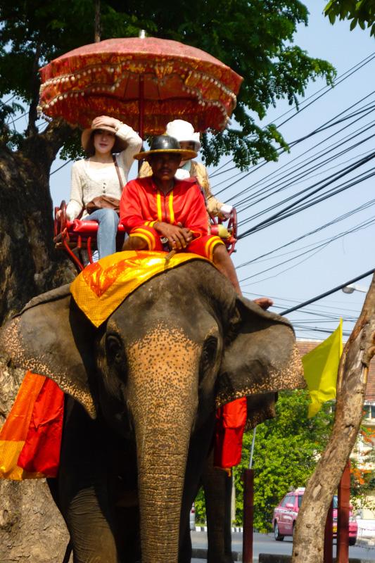 Ayutthaya, Thailand: Elefantenreiten