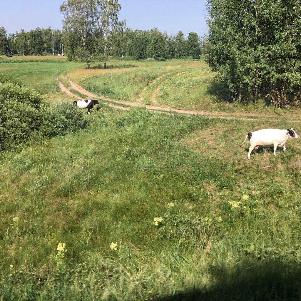 Bahnreise Polen Litauen